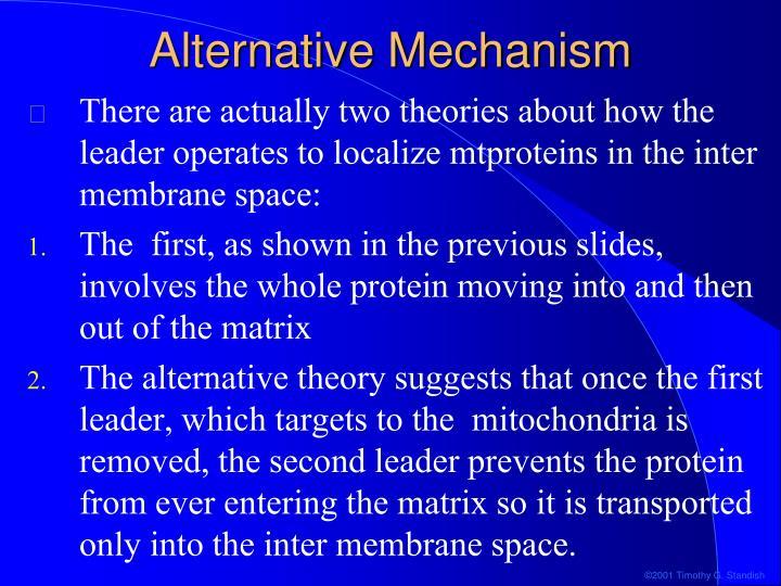 Alternative Mechanism