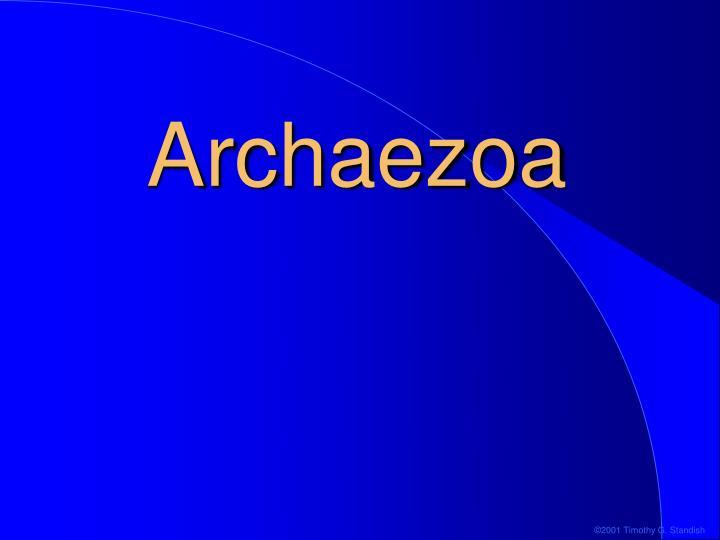 Archaezoa