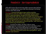 feminis jurisprudence