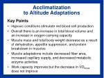 acclimatization to altitude adaptations