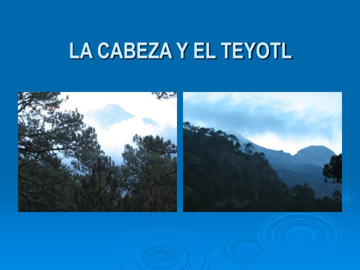 LA CABEZA Y EL TEYOTL