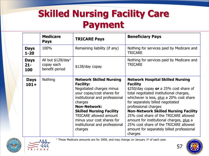 Skilled Nursing Facility Care Payment