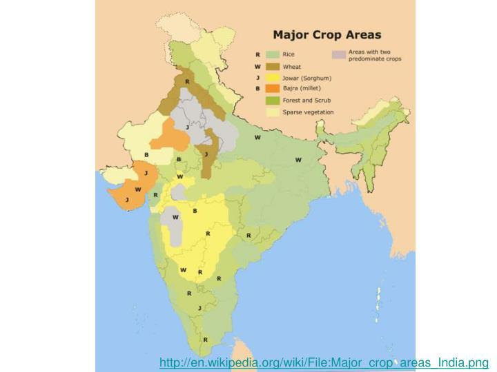Major Crops