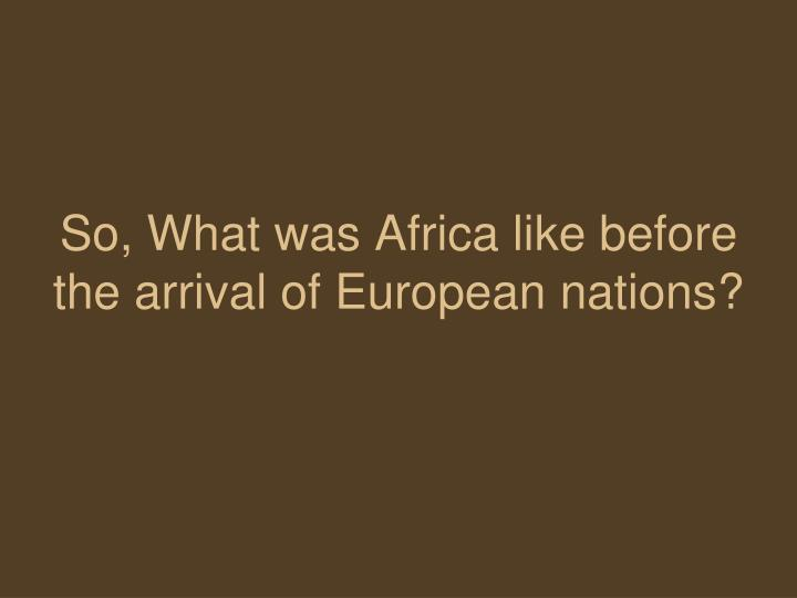 So, What was Africa like before the arrival of European nations?