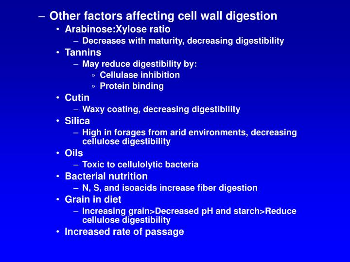 Other factors affecting cell wall digestion