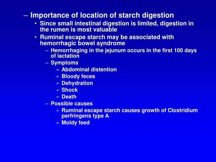 Importance of location of starch digestion