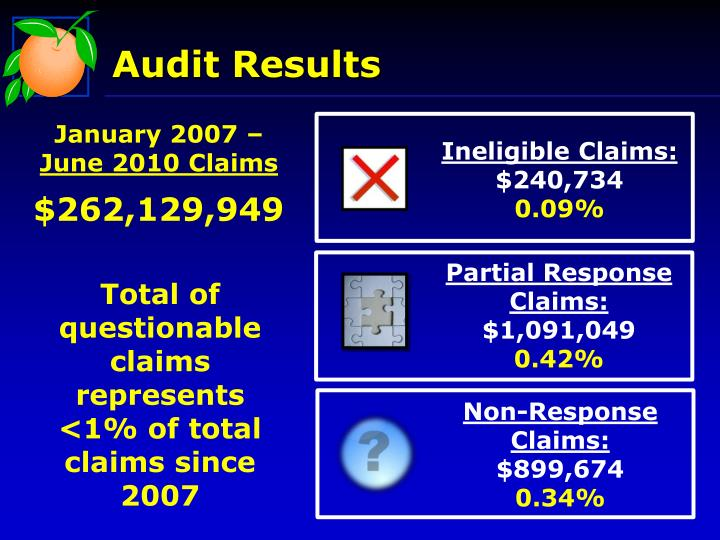 Audit Results