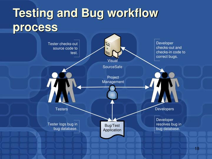 Testing and Bug workflow process
