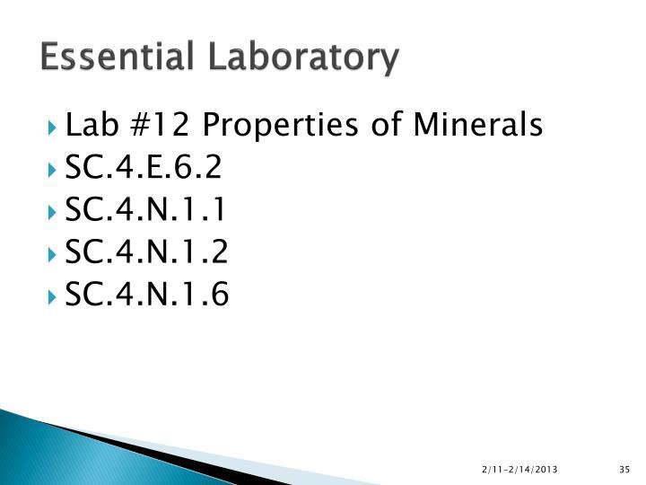 Essential Laboratory