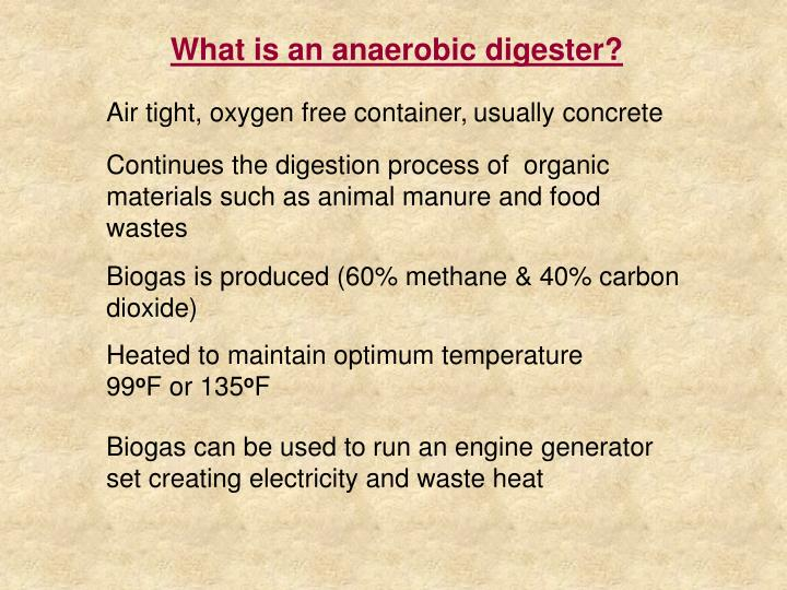 What is an anaerobic digester?