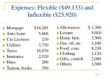 expenses flexible 49 133 and inflexible 25 920