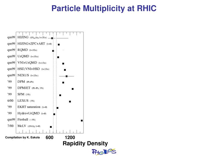 Particle Multiplicity at RHIC