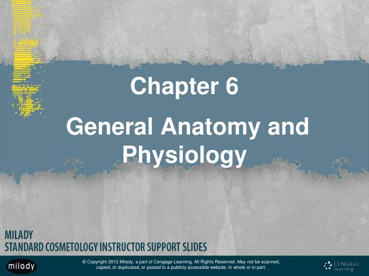 chapter 6 general anatomy and physiology n.