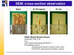 sem cross section observation