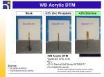 wb acrylic dtm