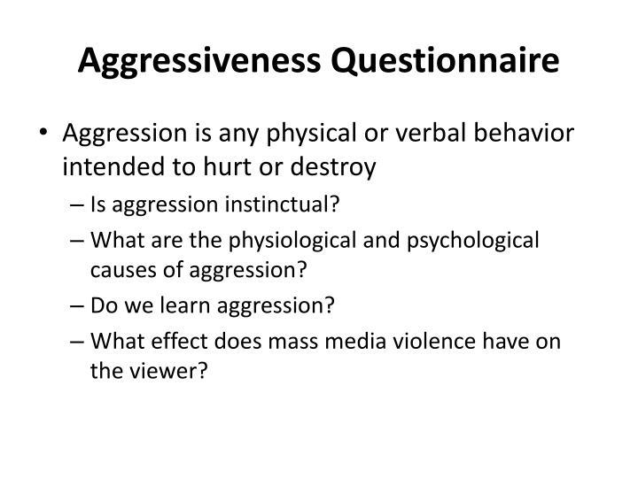 Aggressiveness Questionnaire