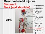 musculoskeletal injuries section 1 back and shoulder