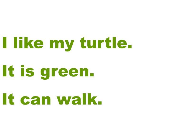 I like my turtle.
