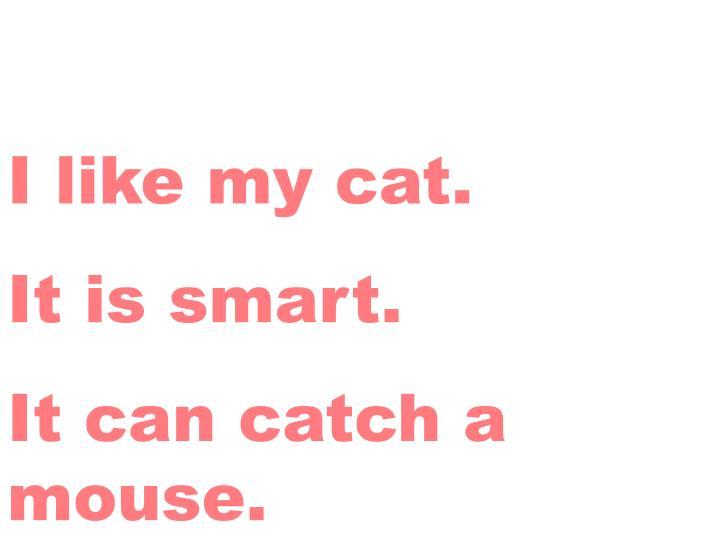 I like my cat.