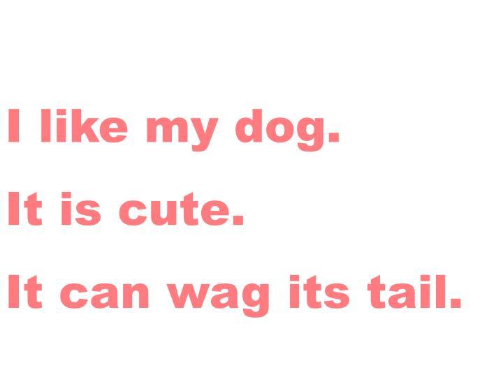 I like my dog.
