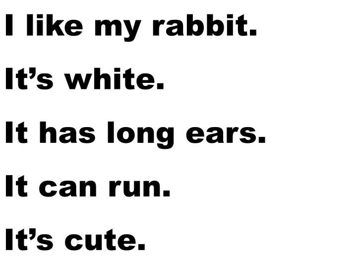 I like my rabbit.
