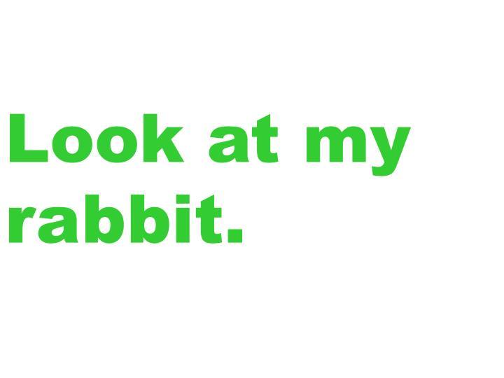 Look at my rabbit.