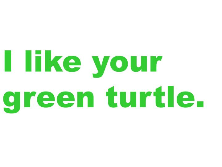 I like your green turtle.
