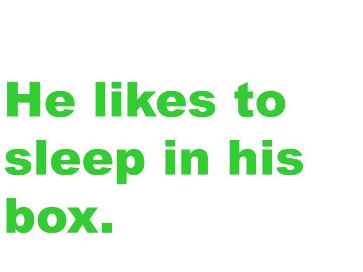 He likes to sleep in his box.