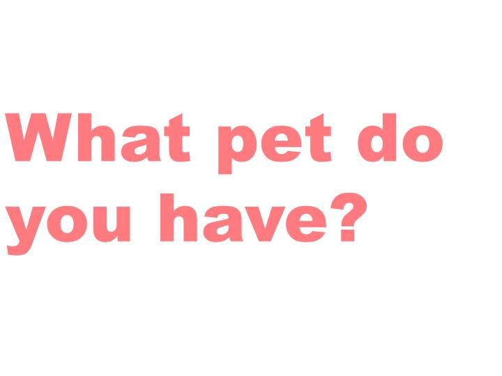 What pet do you have?