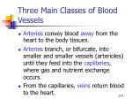 three main classes of blood vessels