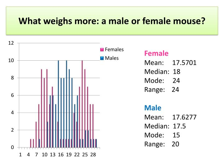 What weighs more a male or female mouse