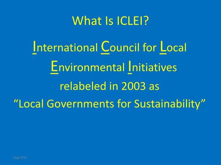 What Is ICLEI?