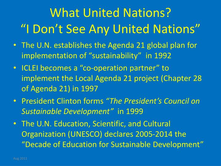 What United Nations?