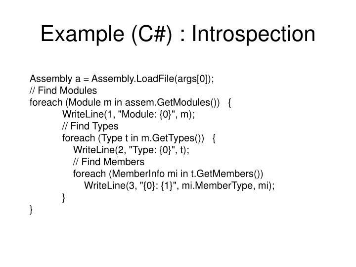 Example (C#) : Introspection