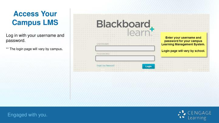 Access Your Campus LMS