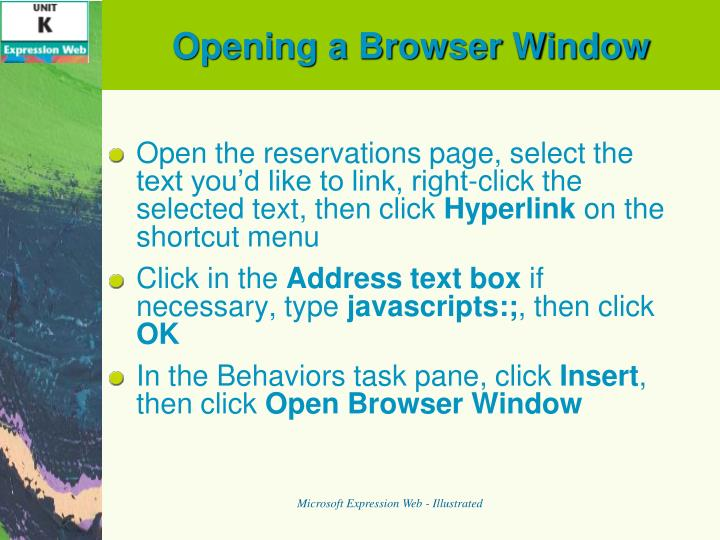 Opening a Browser Window
