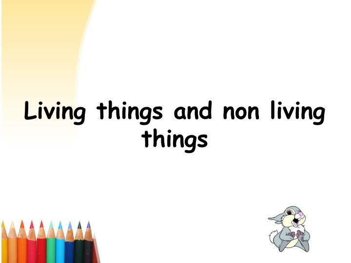 living things and non living things n.