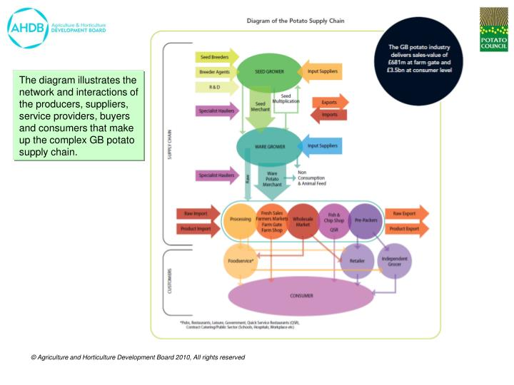 The diagram illustrates the network and interactions of the producers, suppliers, service providers,...