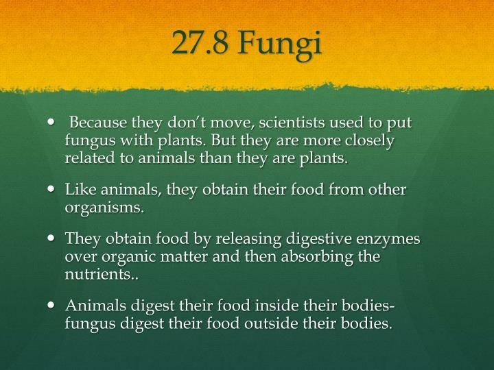 27.8 Fungi