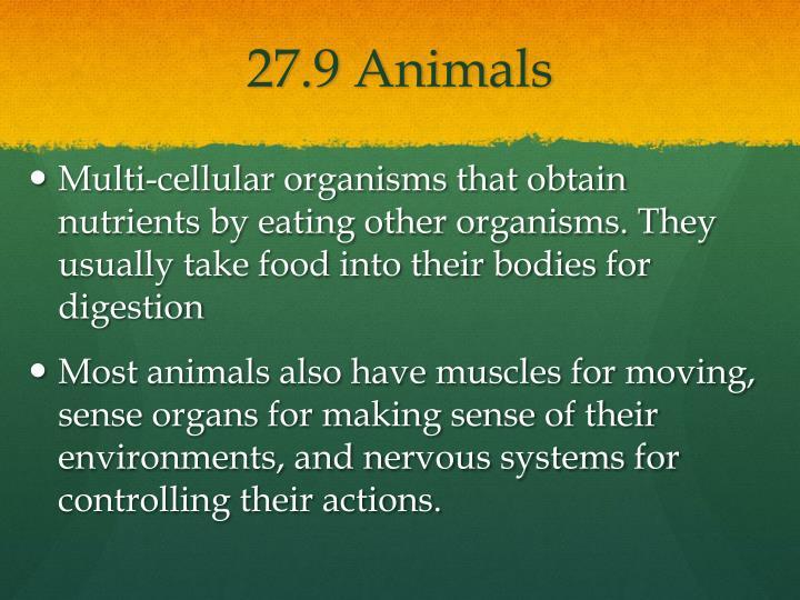 27.9 Animals