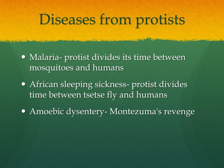 Diseases from protists