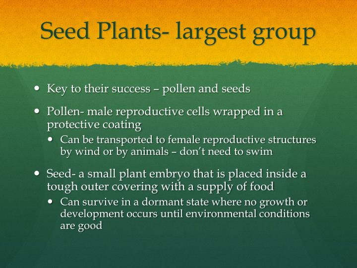 Seed Plants- largest group