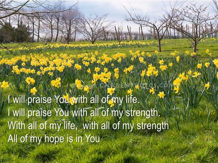 I will praise You with all of my life.