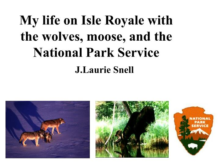 my life on isle royale with the wolves moose and the national park service n.