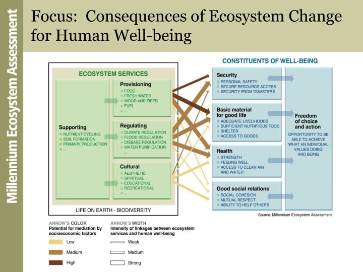 human impact on biodiversity and ecosystem The expansion of humans activities into the natural environment, manifested by urbanisation, recreation, industrialisation, and agriculture, results in increasing uniformity in landscapes and consequential reduction, disappearance, fragmentation or isolation of habitats and landscapes.