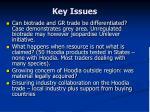 key issues1