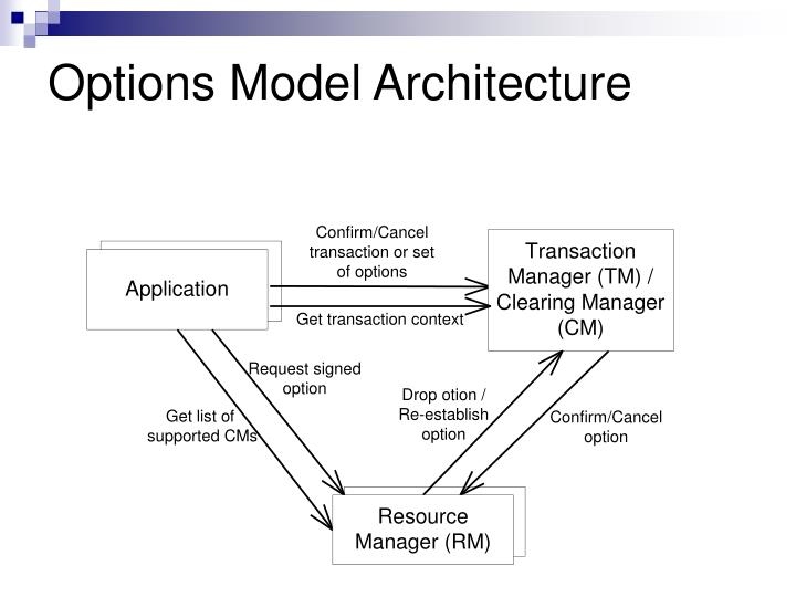 Options Model Architecture