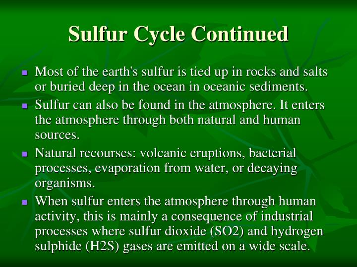 Sulfur Cycle Continued