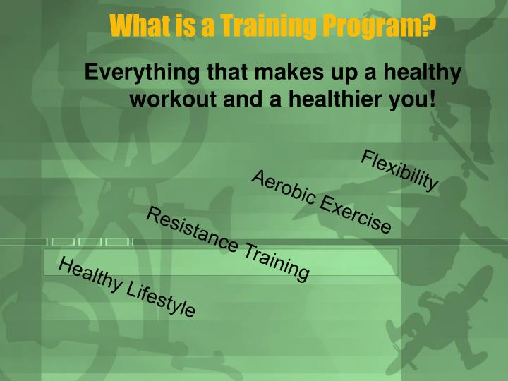 What is a Training Program?