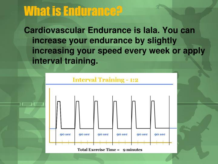 What is Endurance?
